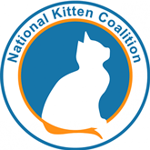 Kitten Coalition Logo