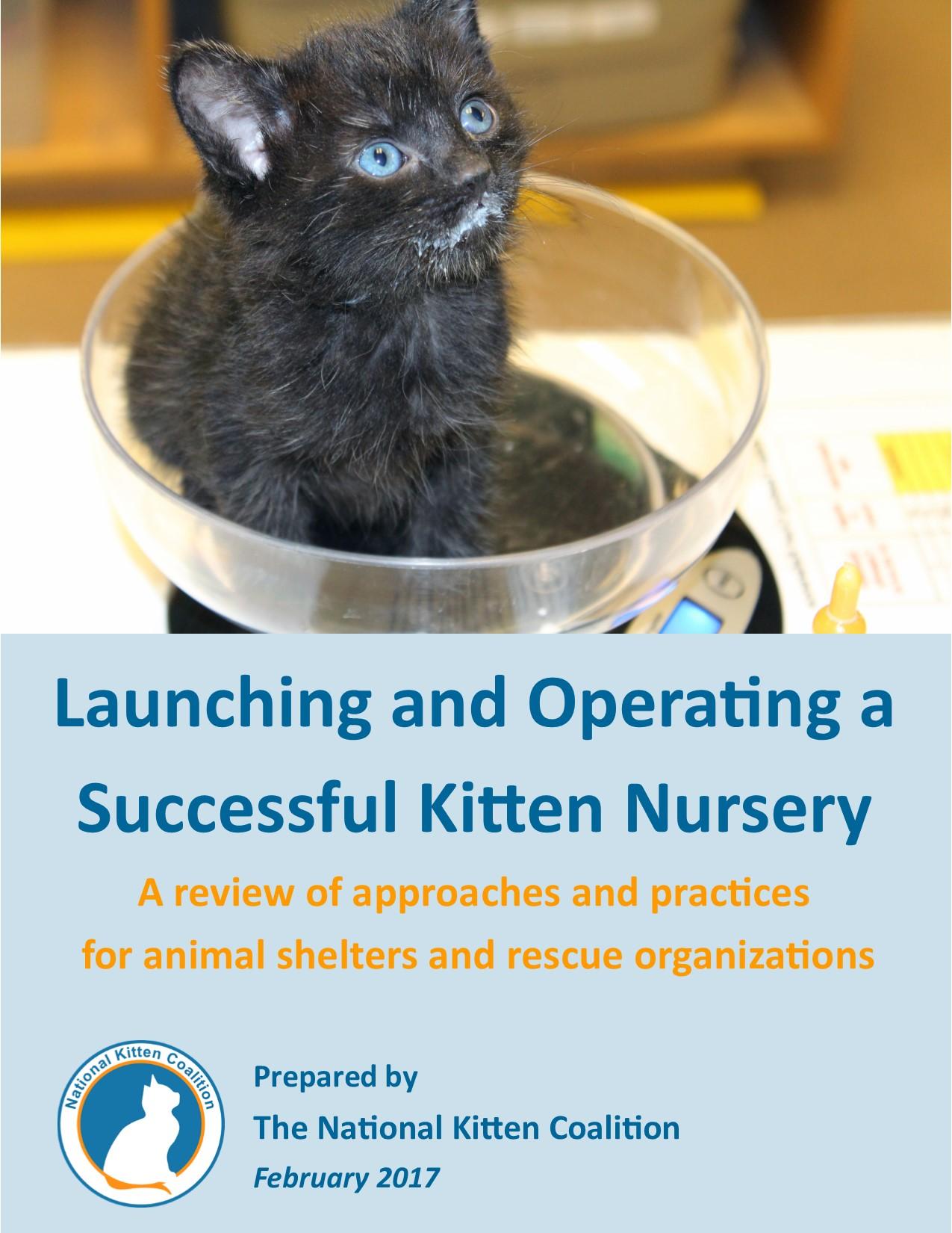 Kitten Nursery Manual