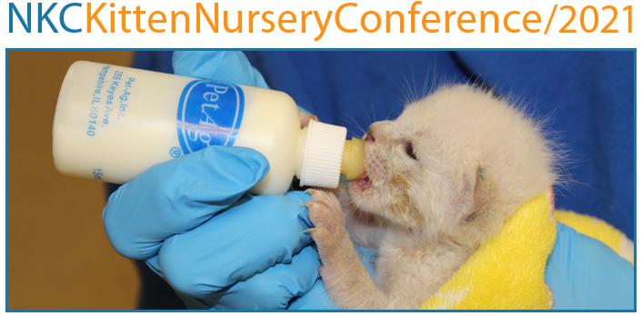 NKC Kitten Nursery Conference